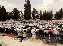 بحث عن الاسلام بالانجليزي جاهز كامل uiatm4b.jpg