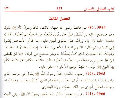 Al-Baghawi - Wikipedia